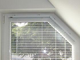 Jalousien Eckfenster/Dreieckfenster